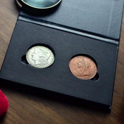 >Hopping Morgan Dollar