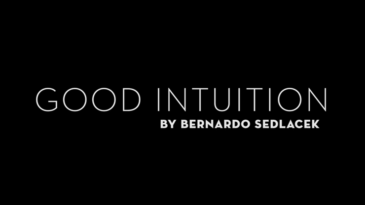 Good Intuition by Bernardo Sedlacek video DOWNLOAD