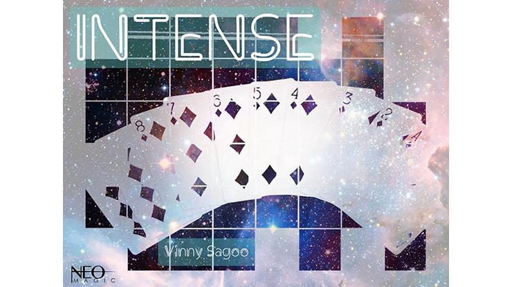 >Intense by Vinny Sagoo video DOWNLOAD