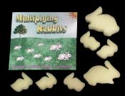 >Multiplying Rabbits