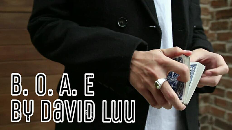 >Blink Of An Eye by David Luu video DOWNLOAD